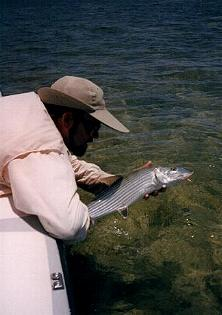 bonefish_fly_fishing-008.jpg (14095 bytes)